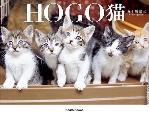 HOGO猫 書籍