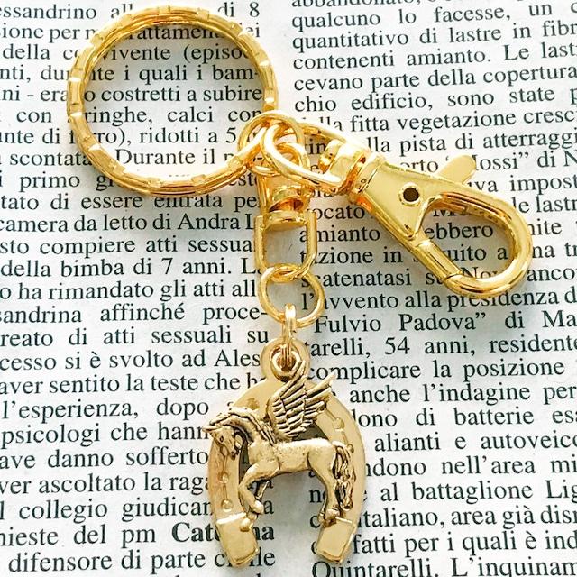 ◆幸運の馬蹄アクセサリー◆ キーリングセット ペガサス 「良い方向へ走る・幸せ・仕事・学問」+「夢を叶える」