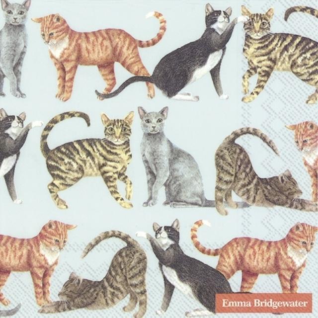 【Emma Bridgewater】バラ売り2枚 ランチサイズ ペーパーナプキン CATS ライトブルー
