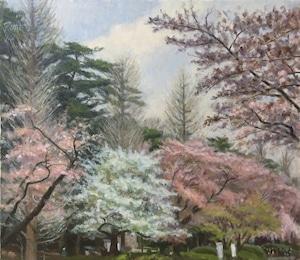 油絵#2「桜並木」F10号
