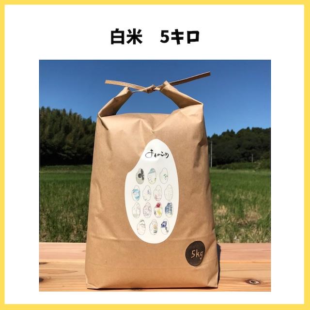 農薬も化学肥料も使わないで育てたお米【白米 5kg】