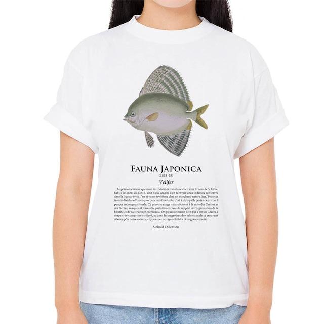 【クサアジ】シーボルトコレクション魚譜Tシャツ(高解像・昇華プリント)