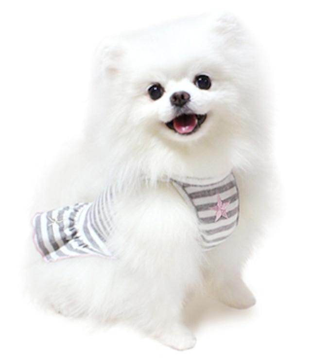 犬の生活 15AW ボーダーワンピ スター