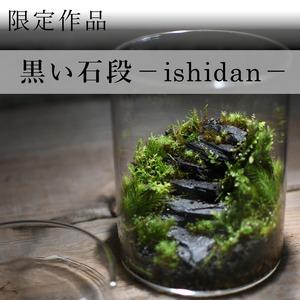 苔景−黒い石段 −【苔テラリウム・現物限定販売】