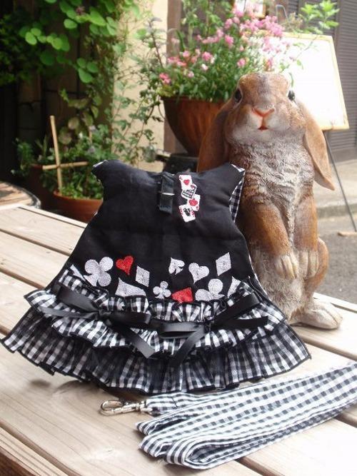うさぎハーネス リフルシャッフル刺繍トランプリード付 女の子向けSサイズ黒