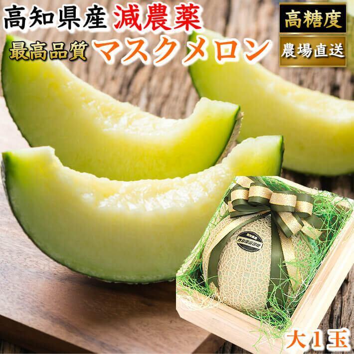 特選 桐箱入り マスクメロン 大玉(約1,5kg) お取り寄せ 贈答用 高級 ギフト フルーツ 果物 高知県産 送料無料
