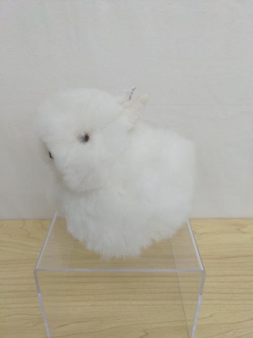 アルパカ純毛 ウサギ 小