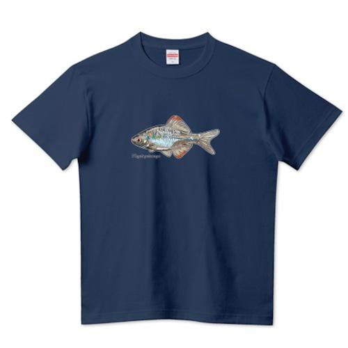 カゼトゲタナゴデザイン / 5.6ハイクオリティーTシャツ(United Athle)