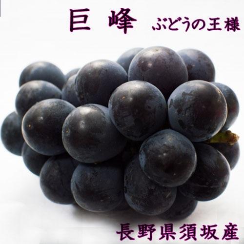 ぶどうの王様 【 巨 峰 】-きょほう- 2kgぐらい 種なし ブドウ