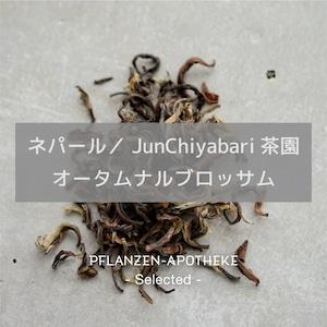 JUNCHIYABARI茶園 オータムナルブロッサム