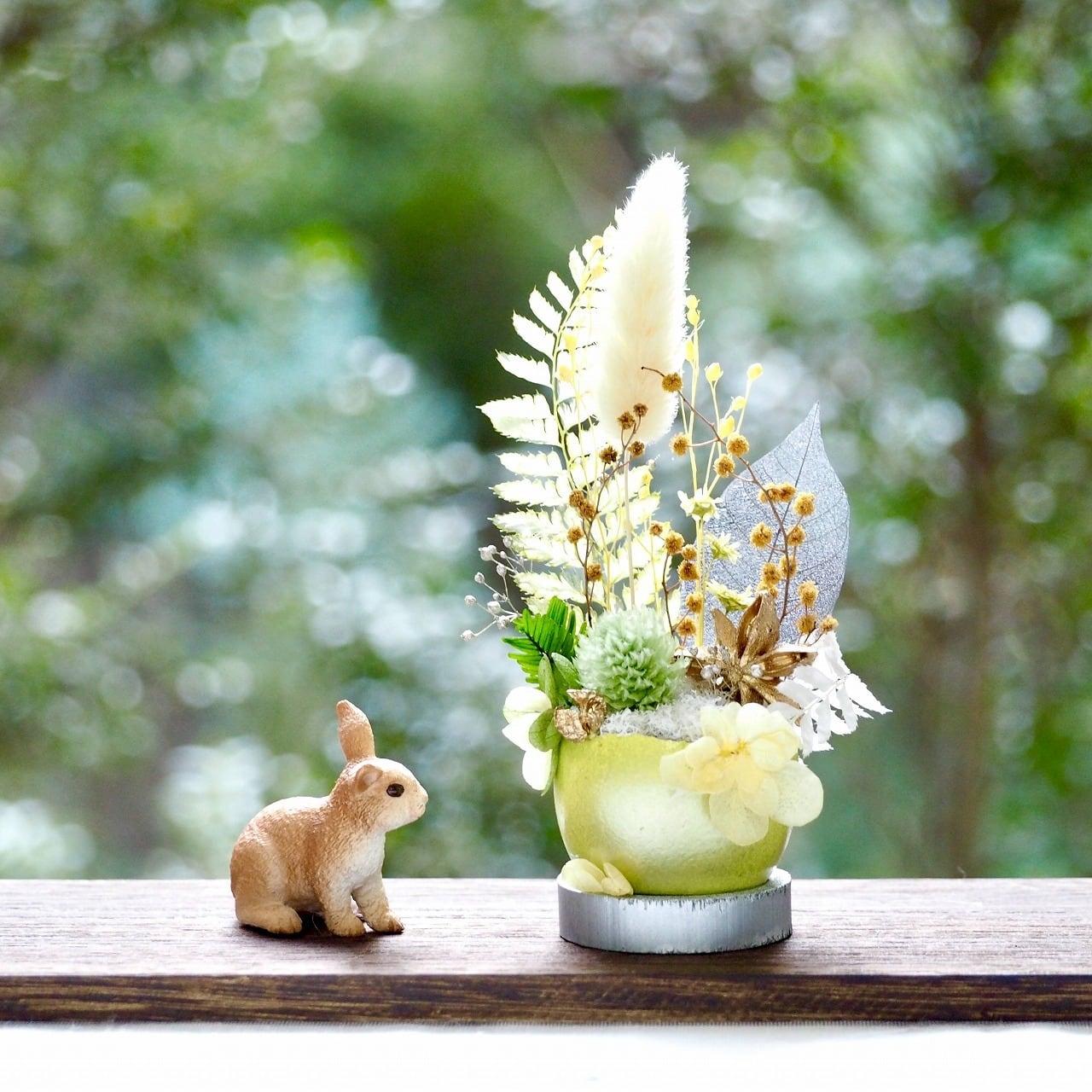 卵に眠る箱庭『黄緑の綿毛』