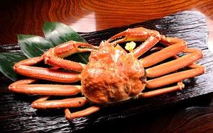 越前蟹 1.0kg~1.1kg(3人前程度、送料込)