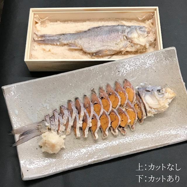 鮒寿し 本漬(26サイズ)
