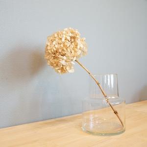 素朴なデザインとサイズ感でどんなお花も受け入れる。リューズガラス フラワーベースロケートS