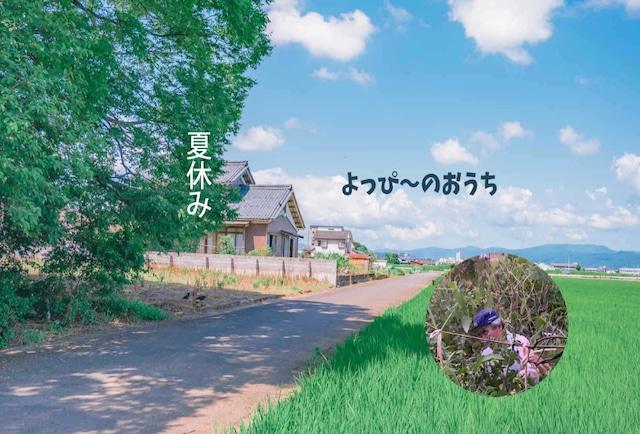 よっぴーの家 【ヤスさんの畑取り放題】