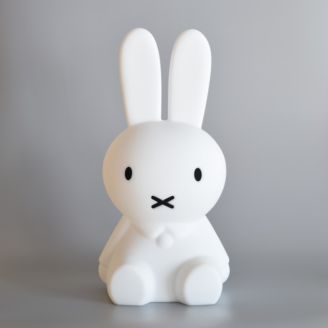 FIRST LIGHT miffy and friends / MIFFY