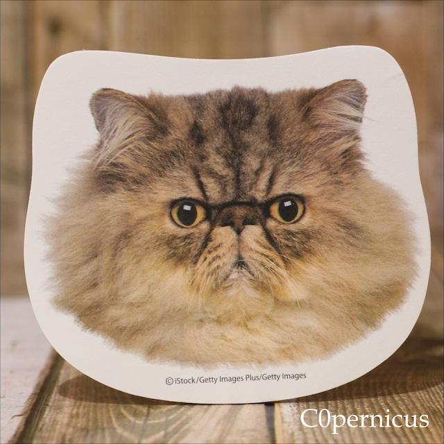 ネコ顔(エキゾチックショートヘア)ふせん20枚入り / 浜松雑貨屋 C0pernicus  ネコ雑貨