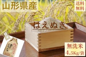 山形県産【はえぬき】精米 乾式無洗米 5Kg/袋【送料無料】