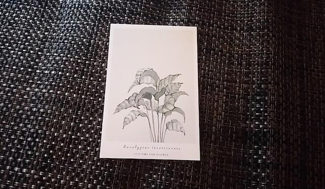 植物 ポストカード J