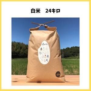 農薬も化学肥料も使わないで育てたお米【白米 24kg】