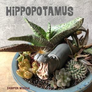 ヒポポタマス