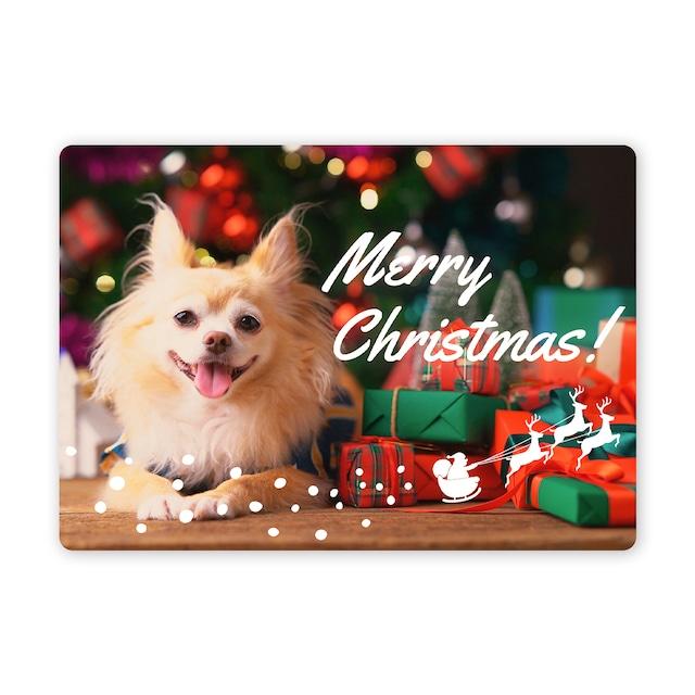 クリスマスカード チワワ