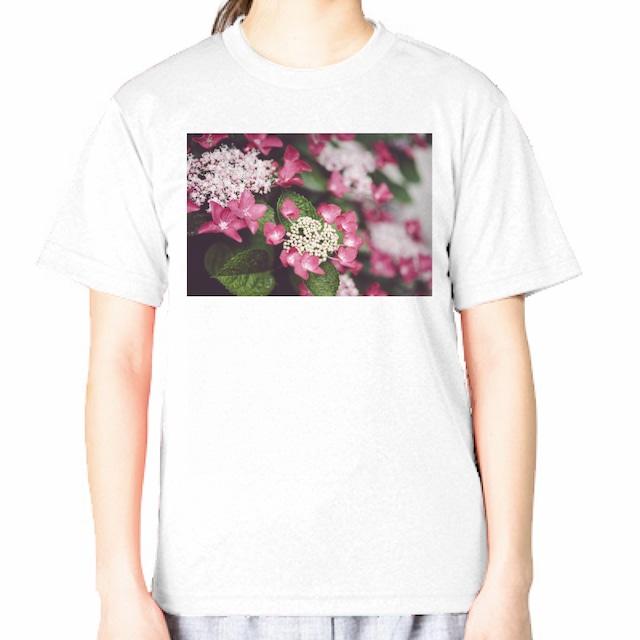 がく紫陽花|GLIMMER ドライ フォトTシャツ 4.4oz
