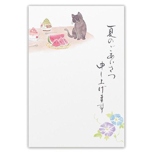 猫葉書(夏のご挨拶はがき)黒猫