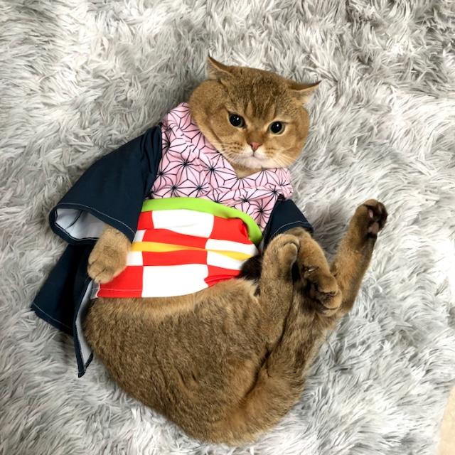 超絶かわいい ペット用 コスプレ衣装 き め つ や い ば ペット 猫服 犬服 コスプレ 衣装 なりきり 犬 猫 愛犬用 愛猫用 服 キャットウエア 着物 ペット用品 かわいい イベント お正月 お祝い 年賀状 ハロウィン インスタ映え 送料無料