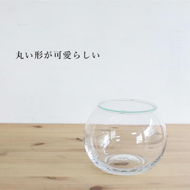 【ガラス容器】インテリアボールL(口径100xh115mm) ◆適度な通気で丈夫にそだつ