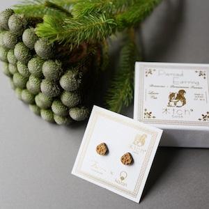 ladybird / てんとうむし(Pierced Mini)
