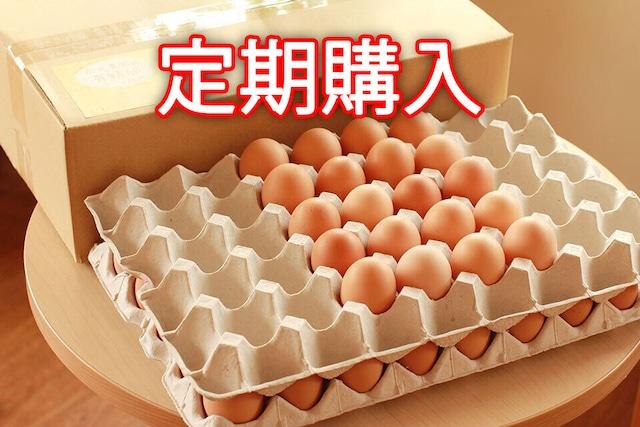 【定期購入】永光農園の平飼い有精卵 60個入り
