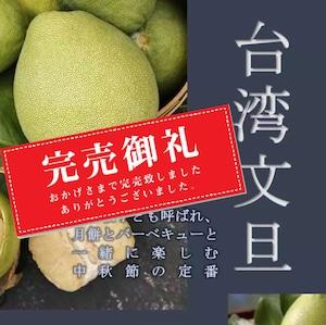 【特別企画】台湾麻豆文旦(マトウブンタン) 1箱約3kg (5~8個) 台湾農場直送 ※100箱限定予約販売