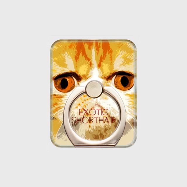 エキゾチックショートヘア おしゃれな猫スマホリング【IMPACT -color- 】