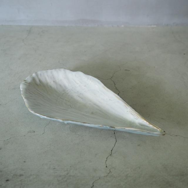 Rough Pen Shell Plate OCT-042