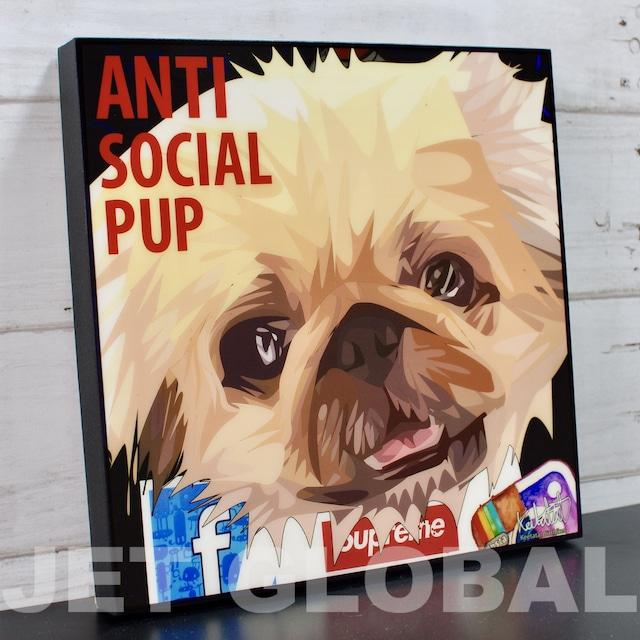 ANTI SOCIAL PUP / Lサイズ 52cm / PAPAN_0025