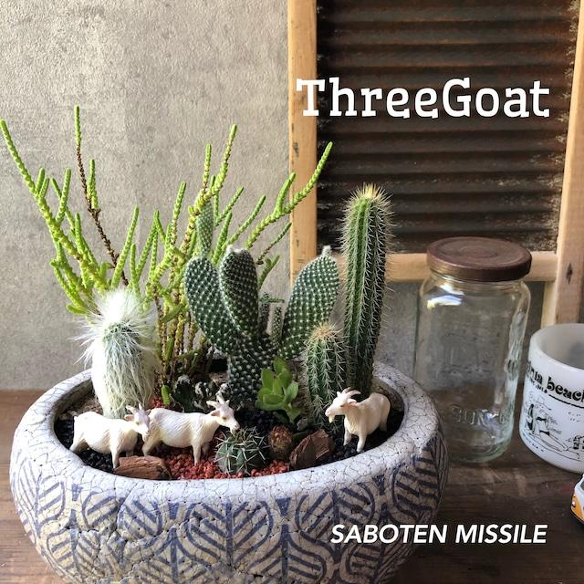 Three Goat
